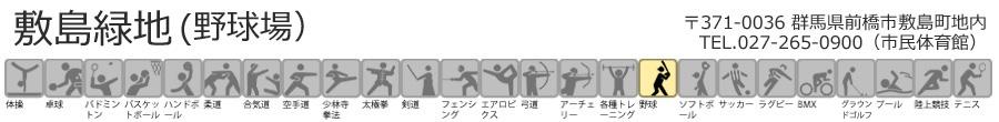 敷島緑地(野球場)