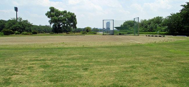 敷島緑地(野球場)メイン風景